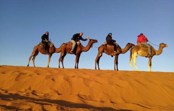 יציאה: 22/04/2020 – מרוקו הקסומה. ערי המלוכה והסהרה